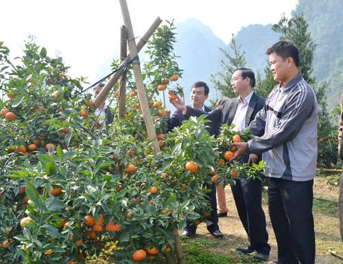 Phát huy truyền thống anh hùng, đoàn kết, năng động, sáng tạo xây dựng huyện Lạc Thủy phát triển nhanh và bền vững