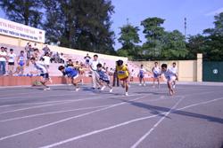 Hằng năm, tỉnh tổ chức nhiều giải đấu để VĐV có cơ hội rèn luyện, học tập kinh nghiệm thi đấu