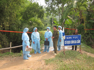 Lực lượng thú y tỉnh, huyện chỉ đạo chống dịch tại xóm Trung, xã Trung Minh, thành phố Hòa Bình.