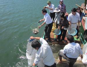Chi cục Thủy sản thả đợt cá giống bổ sung nguồn lợi  cho bãi cá đẻ bến Hiền Lương (Đà Bắc).