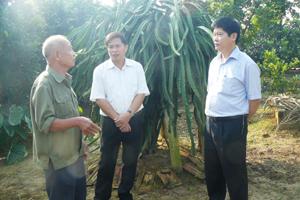 Đồng chí Nguyễn Văn Dũng, Phó Chủ tịch UBND tỉnh và lãnh đạo huyện Tân Lạc thăm mô hình trồng thanh long ruột đỏ tại xóm Tân Hương 1, xã Thanh Hối.