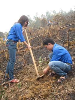 Lực lượng đoàn viên thanh niên huyện tham gia công tác trồng rừng, góp phần bảo vệ và phát triển rừng bền vững.