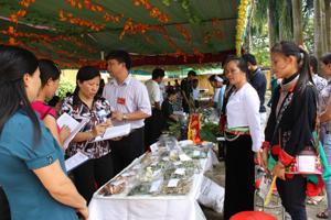 Tham dự hội thi sưu tầm dược liệu và các bài thuốc dân gian huyện Lương Sơn, các đơn vị đã mang đến hội thi 905 loại dược liệu, cây thuốc, 335 bài thuốc được chế biến từ cây dược liệu sẵn có ở địa phương và 20 phương pháp chữa bệnh không dùng thuốc.