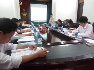 Đại diện đơn vị tư vấn trình bày nội dung Quy hoạch.