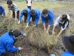Đoàn Thanh niên trường CĐSP Hoà Bình thường xuyên tổ chức hoạt động tình nguyện tại chỗ tạo môi trường cho đoàn viên rèn luyện, phấn đấu và trưởng thành.