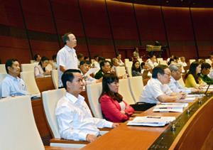 Ðại biểu QH tỉnh Hải Dương phát biểu ý kiến tại hội trường.           Ảnh: DUY LINH
