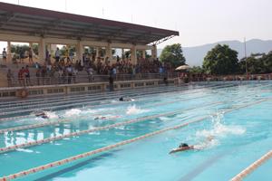 Các vận động viên tham dự nội dung bơi cự ly tại giải Bơi KHPĐ tỉnh năm 2015.