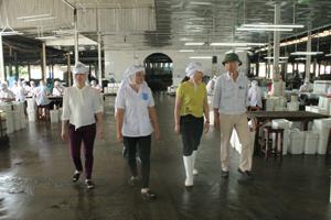 Đoàn kiểm tra Sở LĐ-TB&XH kiểm tra thực tế tình hình thực hiện công tác ATVSLĐ tại Công ty TNHH Pacific (TPHB)