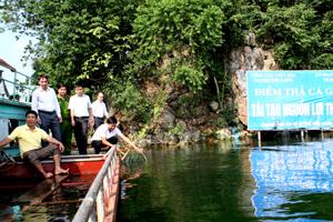 Thả cá trên hồ Hòa Bình.