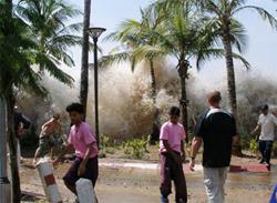 Cảnh giác với thảm họa sóng thần tại Việt Nam