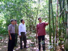 Hội CCB huyện Lạc Sơn thăm mô hình phát triển kinh tế của gia đình ông Bùi Văn Đủi.