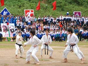 Các em học sinh Lớp võ sinh karatedo biểu diễn võ thuật