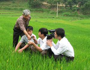 Nông dân cần được tiếp cận tốt hơn với các dịch vụ BVTV để chủ động kiểm soát rủi ro từ sâu bệnh hại cây trồng (ảnh: nông dân xã Do Nhân, Tân Lạc được cán bộ Chi cục BVTV hướng dẫn cách phát hiện, diệt trừ bệnh rầy nâu hại ây lúa)