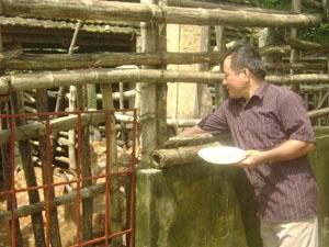 Ông Nguyễn Ngọc Khánh chăm sóc đàn hươu của gia đình.