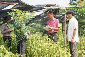 BQL dự án thực hiện tập huấn quản lý rừng cộng đồng ở xã Hợp Đồng (Kim Bôi).