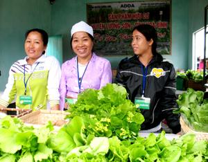 Sản phẩm nông nghiệp hữu cơ sản xuất trên địa bàn huyện Lương Sơn được người tiêu dùng đón nhận, là bước đột phá trong sản suất nông nghiệp của huyện.