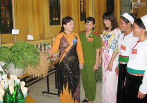 Lãnh đạo Hội LHPN tỉnh thăm quan gian trưng bày của các chi hội phụ nữ huyện Tân Lạc tại Đại hội đại biểu Hội LHPN huyện lần thứ XXI, nhiệm kỳ 2011-2016.