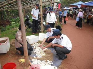 Lực lượng thú y huyện Lạc Sơn kiểm soát sản phẩm trứng gia cầm lưu thông tại các chợ.