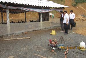 Đoàn kiểm tra điều kiện ATTP thực tế tại trại gà xã Lạc Lương (Yên Thủy)