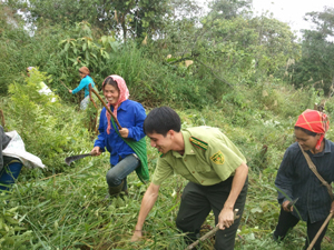 Nhân dân xóm Băng, xã Piềng Vế được huy động cùng lực lượng kiểm lâm huyện phát dọn, duy tu đường băng trắng cản lửa khu vực giáp ranh.