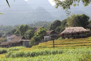 Bản Mường Giang Mỗ, xã Bình Thanh (Cao Phong) lưu giữ được hơn 100 nếp nhà sàn truyền thống.