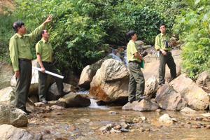 Lực lượng Kiểm lâm huyện Đà Bắc kiểm tra hiện trạng rừng, triển khai phương án PCCCR trên địa bàn.