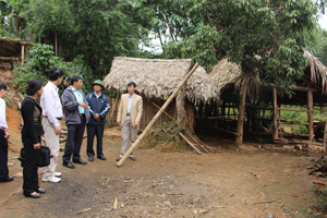 Đoàn kiêm tra lưu ý hộ chăn nuôi trong phòng - chống đói rét, dịch bệnh cho đàn vật nuôi còn thiếu chủ động tại xã Bao La (Mai Châu).