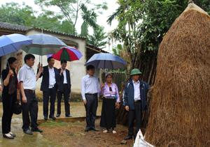 Đoàn kiểm tra việc chủ động cây rơm dự trữ của hộ chăn nuôi ở xã Ân Nghĩa (Lạc Sơn).