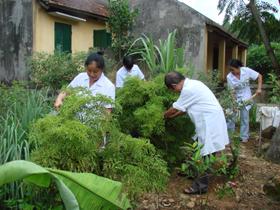 Cán bộ Trạm y tế xã Tân Thành(Lương Sơn) chăm sóc vườn thuốc nam.