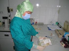 Xử lý, biệt hóa và lưu trữ tế bào gốc từ máu cuống rốn tại Bệnh viện Truyền máu và Huyết học TPHCM