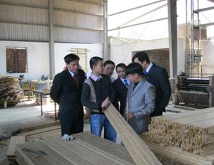 Các đại biểu thăm quan dây truyền sản xuất ván ghép thanh.