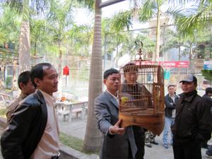 Các thành viên CLB chim cảnh Hòa Bình trao đổi kinh nghiệm nuôi dưỡng, chăm sóc, bảo vệ chim cảnh.