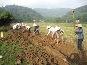 Nhân dân xóm Bún, xã Yên Mông, thành phố Hoà Bình đóng góp ngày công lao động để đào đắp đất, khơi thông hệ thống kênh mương nội đồng phục vụ sản xuất vụ đông xuân sắp tới.
