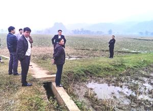BCĐ 800 tỉnh và huyện đi kiểm tra thực tế tại xã Tân Lập.