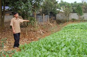Ông Dương Minh Đức bày tỏ nỗi bức xúc trên phần đất tranh chấp giữa gia đình và Công ty TNHH một thành viên Cao Phong.