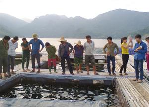 Các hộ nông dân tham quan mô hình nuôi cá tầm trong lồng tại xã Hiền Lương (Đà Bắc).