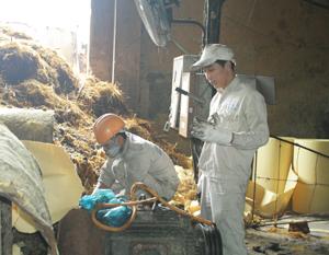 Công ty TNHH MTV Hapaco Đông Bắc trang bị đầy đủ phương tiện bảo vệ cá nhân cho người lao động.