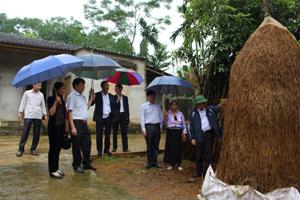 Đoàn kiểm tra thực tế tại hộ chăn nuôi việc chuẩn bị thức ăn cho vật nuôi vụ rét