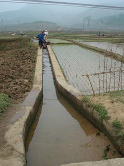 Năm 2008, toàn tỉnh có 16,5km kênh mương được hỗ trợ cứng hoá