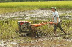 Nông dân xã Quy Hậu- Tân Lạc đưa cơ giới hoá vào sản xuất nông nghiệp.