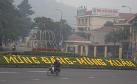 Thảm hoa mừng Đảng, mừng xuân tại ngã ba Cung văn hóa tỉnh đã được hoàn thành.