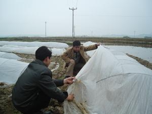 Cán bộ phòng NN&PTNT huyện Lương Sơn kiểm tra diện tích mạ đã gieo.