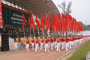 Diễu hành tại Lễ khai mạc Hội khỏe Phù Đổng tỉnh lần thứ VI năm 2011.
