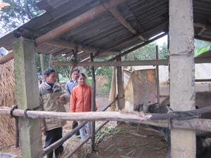 Kiểm tra công tác dự trữ thức ăn và che chắn chuồng trại gia súc tại các hộ ở xóm Nam Hạ, xã Nam Thượng.