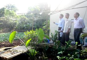 Cán bộ Trung tâm Khuyến khích phát triển kinh tế TPHB tham khảo mô hình trồng rau sạch với hệ thống tưới nước tự động của hộ gia đình anh Nguyễn Văn Hải (xóm Chùa, xã Thống Nhất).