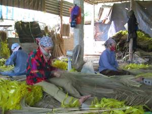 Nhân dân thị trấn Kỳ Sơn phát triển nghề chổi chít, góp phần giải quyết việc làm và tăng thu nhập cho nhiều lao động nữ. (Ảnh: Lưu An).