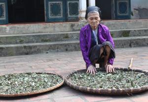 Bước sang tuổi 99 nhưng Mẹ Việt Nam Anh hùng Nguyễn Thị Mêng  vẫn khỏe mạnh, minh mẫn.
