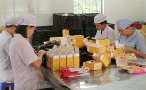 Công ty CP Y - Dược phẩm Sông Đà chú trọng trang bị phương tiện bảo hộ cho người lao động.