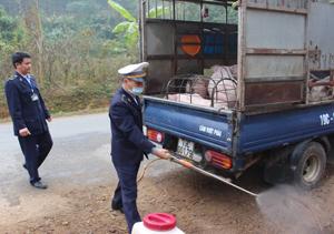 Chốt kiểm dịch động vật tạm thời duy trì hoạt động 24/24 giờ kiểm soát vận chuyển gia súc, gia cầm vào địa bàn thành phố Hòa Bình.