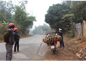 Chốt kiểm dịch động vật xã Yên Mông (thành phố Hòa Bình) phun khử trùng phương tiện và gia cầm vận chuyển từ địa bàn lân cận vào địa bàn